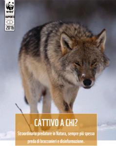 cattivo_chi