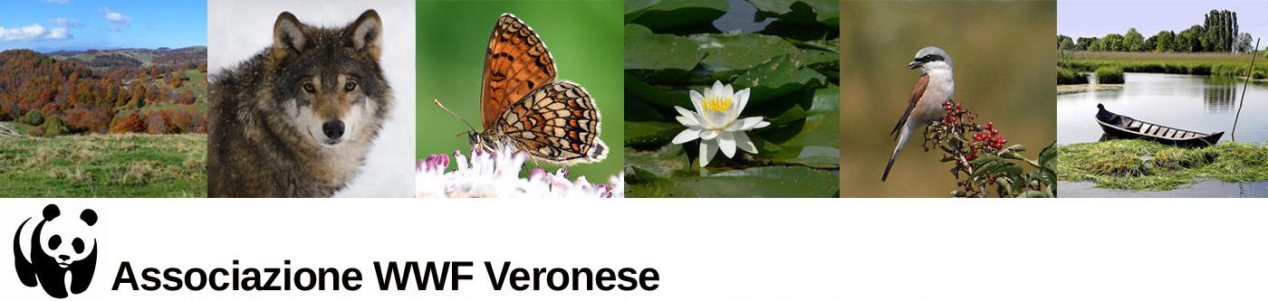 WWF Veronese
