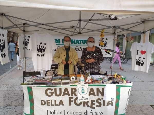 WWF in Piazza Erbe